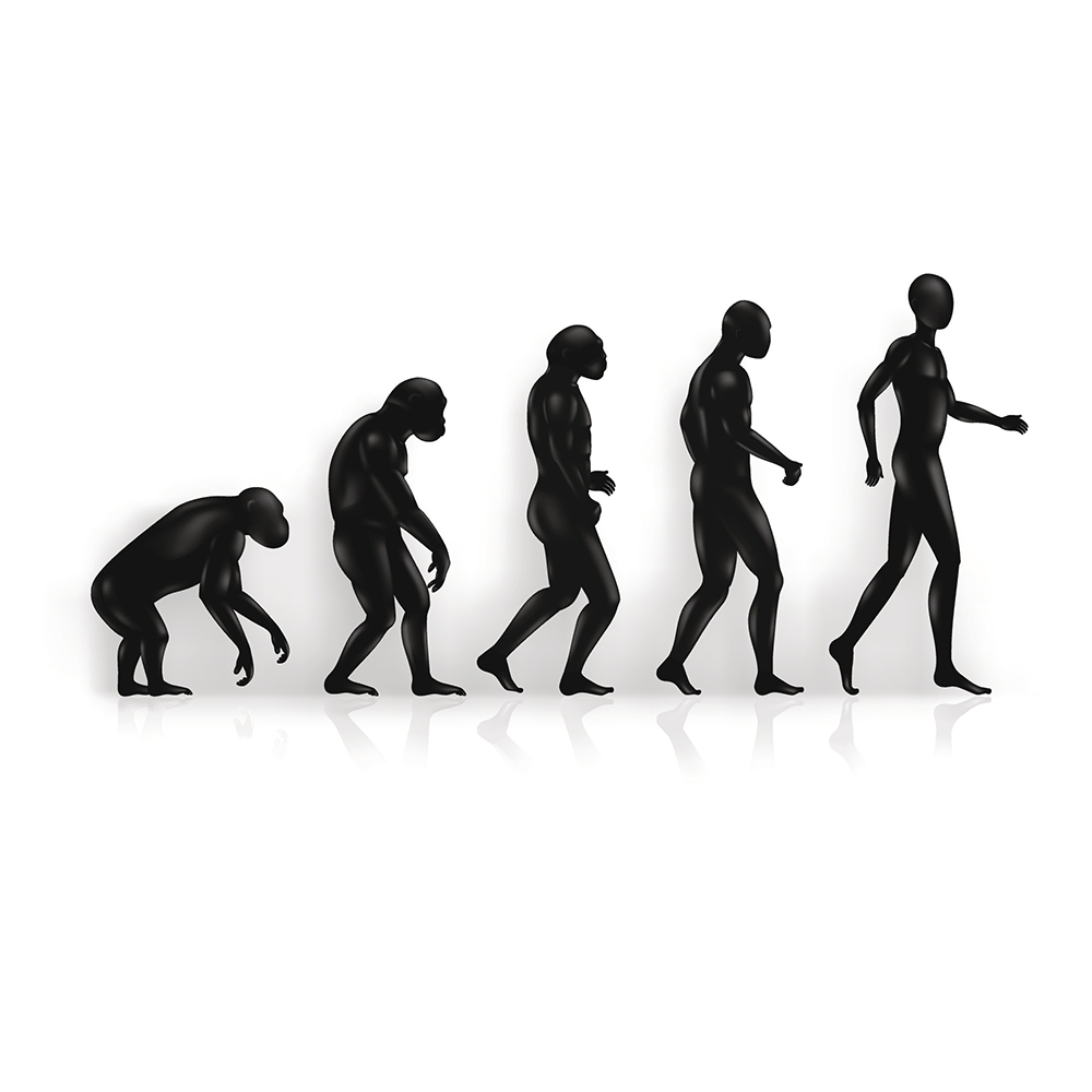 an overview of the theory of evolution Overview the idea of  manager who took management practices to their next level of evolution  theory y categorized workers as able to and wanting to work hard.